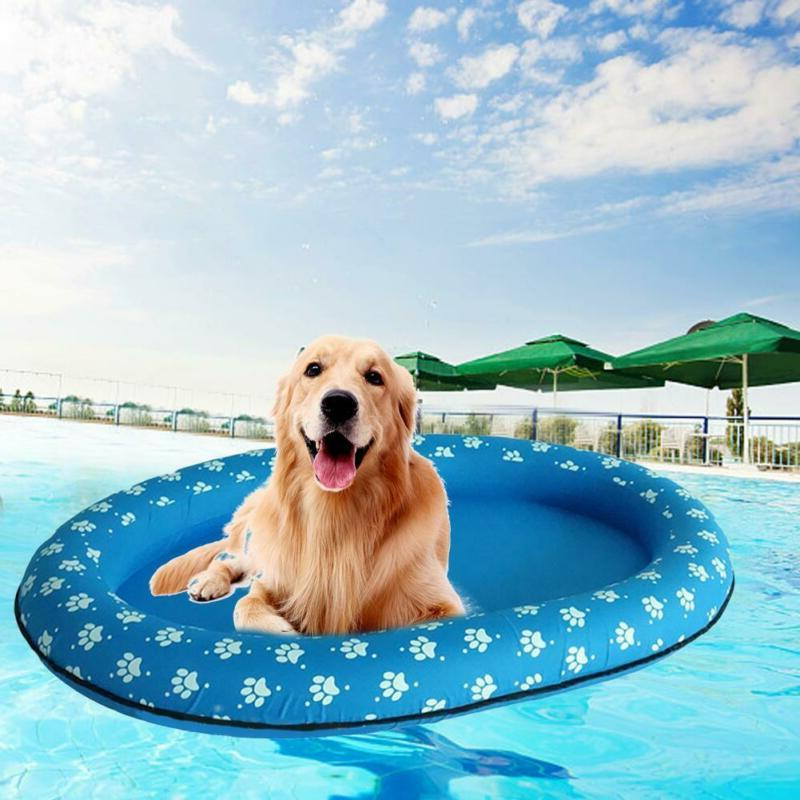 Swimways Inflatable Paws 2019 The
